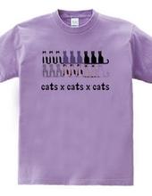 cats×cats×cats