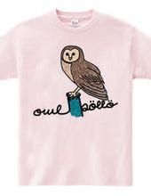 owl(pöllö)
