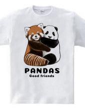 PANDAS【A】