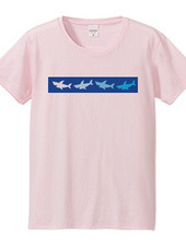 4color shark