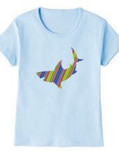 color shark