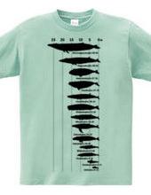 クジラのサイズ 2021-BL