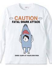 サメに注意!
