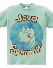 Java Sparrow!