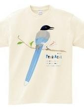 PEGA AZUL 0500 オナガは尾長でサックスブルー