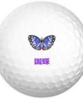 国蝶 オオムラサキ
